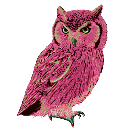 eagle owl: Pink eagle owl with green eyes illustration
