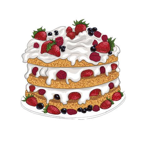 bisquit: delicious berry bisquit cake illustration