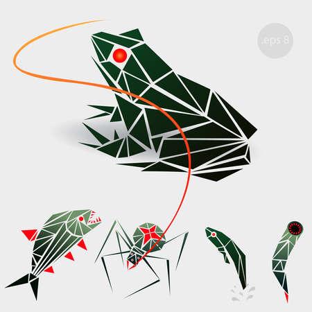 leech: gráfica ilustración de una rana, una araña, un renacuajo y una sanguijuela Vectores