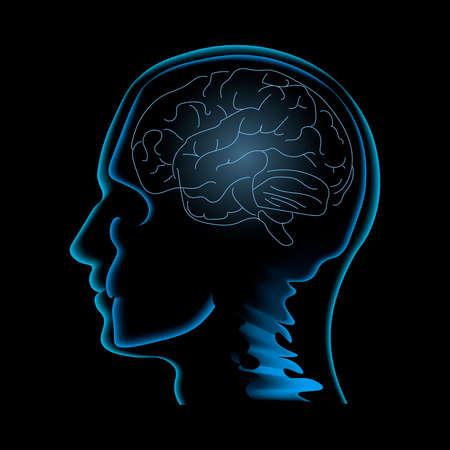 Neuroscience vector illustration. Image of the human profile with skull and brain inside it isolated on the black backgrond