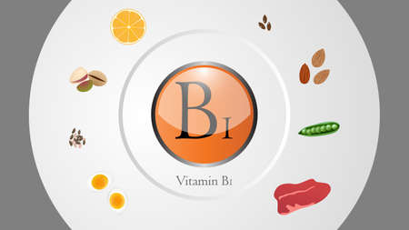 Vitamin B1 sources vector illustration Illustration