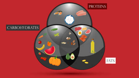 Proteins, fats and carbohydrates scheme. Nutrition vector illustration