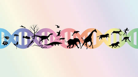 Evolution abstract illustration vector design.