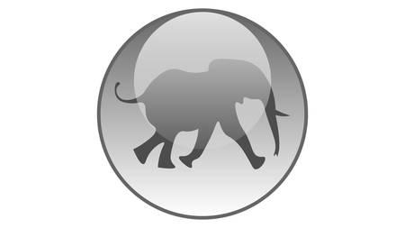 Elephant icon vector design. Wildlife icons
