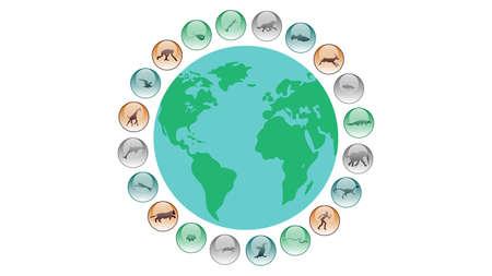 Diversidad de formas de vida. Diseño de vector de ilustración de evolución de vida. Iconos de animales Ilustración de vector