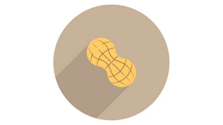 Peanut icon vector design. Simple stylish icons with shadow