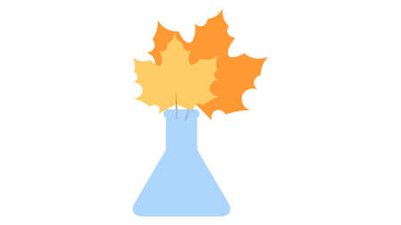Flask with yellow leaves icon vector design. Autumn maple leaves in the vase