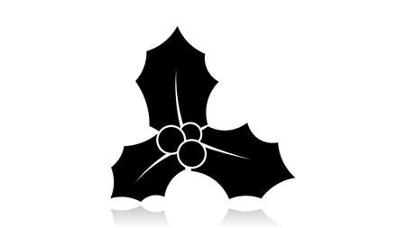 Mistletoe icon vector design. Black icon with reflection isolated on the white background