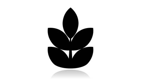 Branch icon vector design. Black icon with reflection isolated on the white background