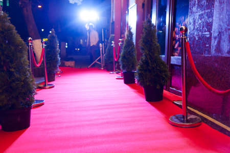 Red Carpet - is traditionally used to mark the route taken by heads of state on ceremonial and formal occasions Фото со стока