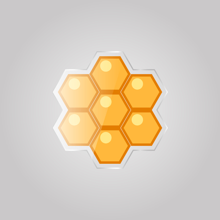 Bee honeycombs on a gray background. Vector illustration . Illustration