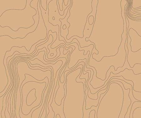 Topographic relief map of the earth. Vector illustration .  イラスト・ベクター素材