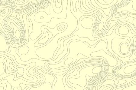 Topographic map of the terrain. Vector illustration .