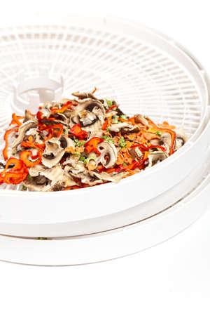dried vegetables: Hortalizas de alimentos deshidratador Zanahorias bandeja, champi�ones, apio, pimiento rojo Foto de archivo