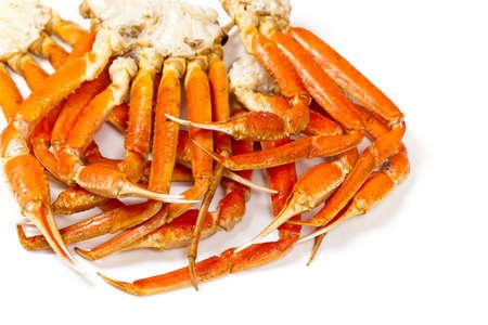 animal leg: Snow Crab Legs