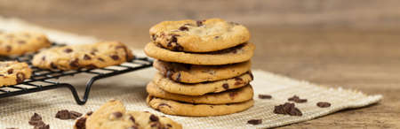 chocolate chip cookie: Delicious Fresh Chocolate Chip Cookies. Selective focus. Panoramic image.