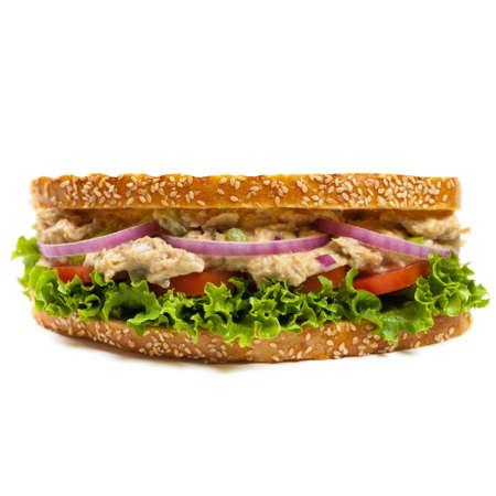 sandwich white background: Grilled Tuna Panini Sandwich on white background. Selective focus.