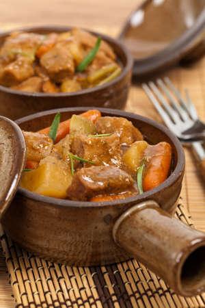 slow cooker: Slow Cooker Pork Stew. Selective focus.