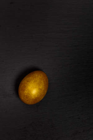 priceless: Golden egg on black background. Macro. Selective focus. Stock Photo