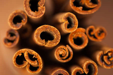 Cinnamon Sticks. Macro. Selective Focus. Shallow DOF.