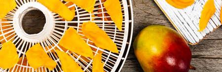Dried Mango Fruit. Selective focus. Фото со стока