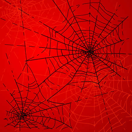 Halloween Spiders web  Vector