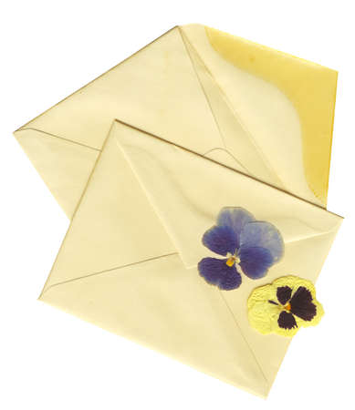 vintage envelopes and dry flowers with clipping path Stock Photo - 11602694