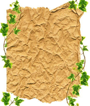 Crumpled paper and border made of green Ivy on a white background photo