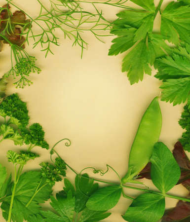 Organic herb border. Set against a brown eco friendly background. photo