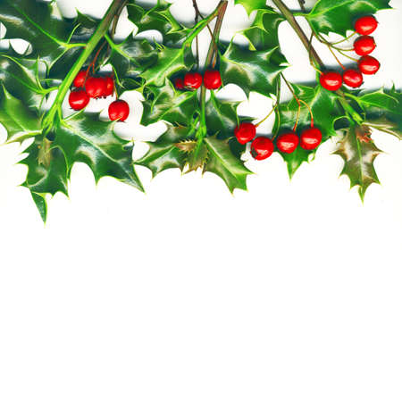 Christmas border made of holly with red berrys, isolated on white Stock Photo - 11586661