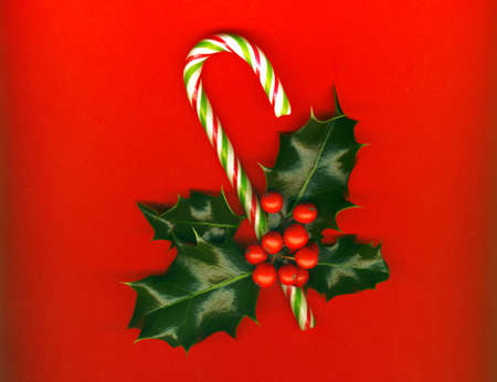 Candy cane with pretty holly leaves and berries on red background, candy cane photo