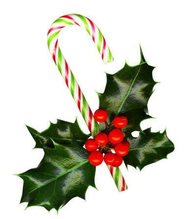 carol:  Candy cane with pretty holly leaves and berries on white background