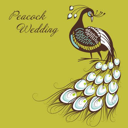 showoff: Peacock Card
