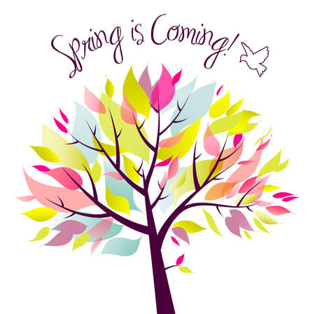 bloom: Spring is coming!