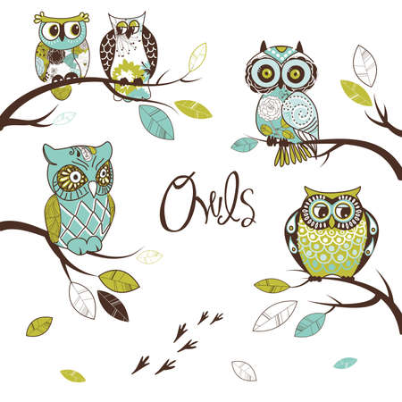 Collection of five different owls, sitting on the tree brunches
