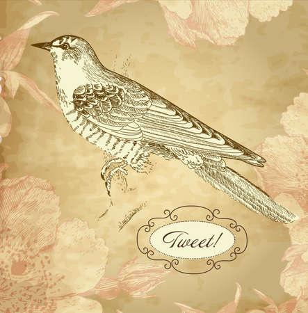 vintage card with a bird Vector
