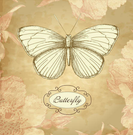 Vintage card with a butterfly Vector