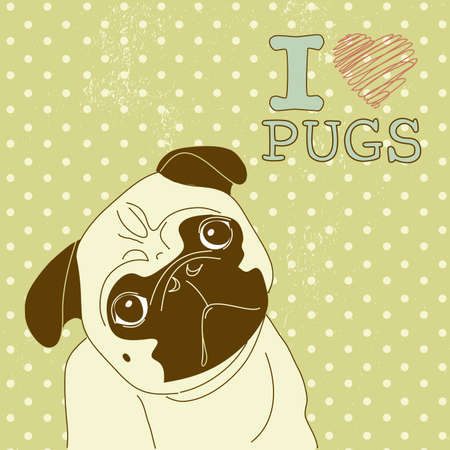 I love Pugs! Cute little pug on polka dot background  Vector