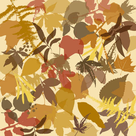 Brown Autumn leaves background  Vector