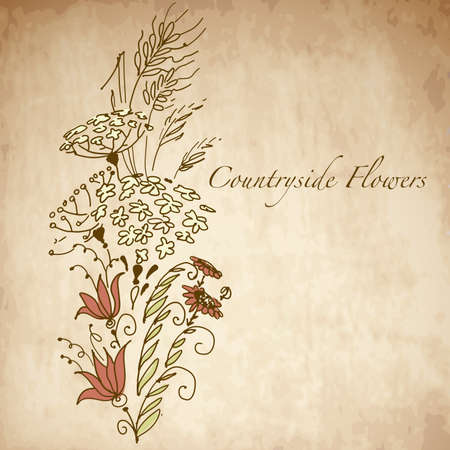 Countryside flowers, greeting card with hand drawn flowers Vector