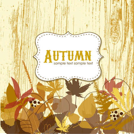 Autumn leaves background Stock Vector - 16681272