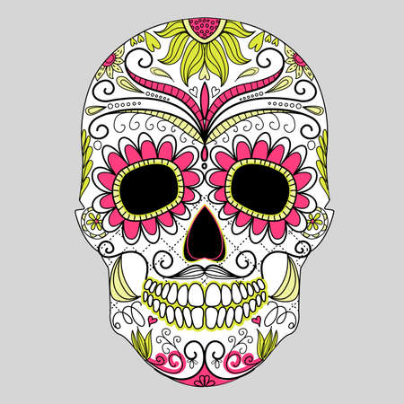 Day of The Dead colorful Skull with floral ornament  Vector