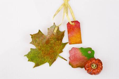 accesory: Autumn accesory