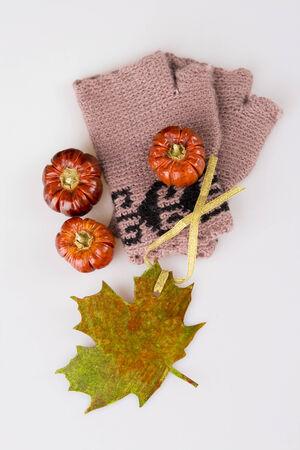 Autumn accesory