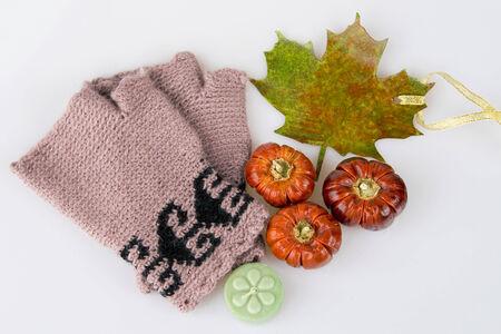 Autumn accessory