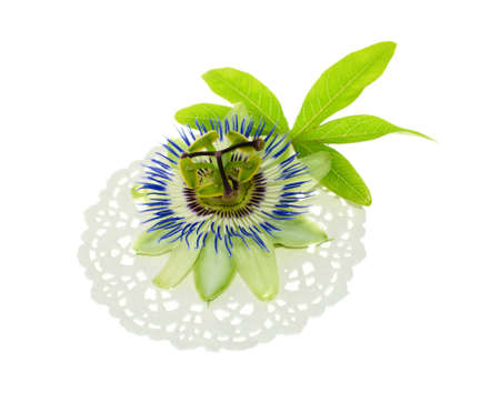 grenadilla: passionflower on a napkin with leaf Stock Photo
