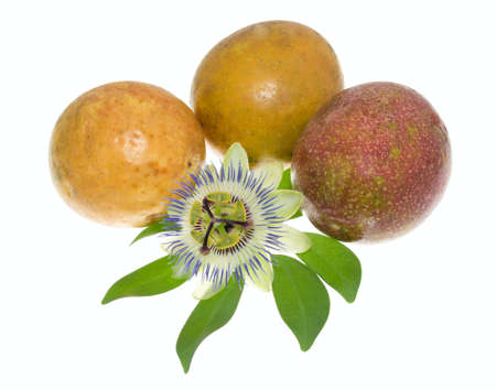 grenadilla: passionflower on a maracuya, isolated Stock Photo