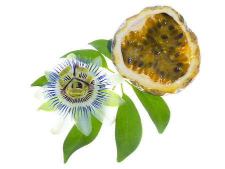 passionflower: passionflower with cut maracuya, isolated
