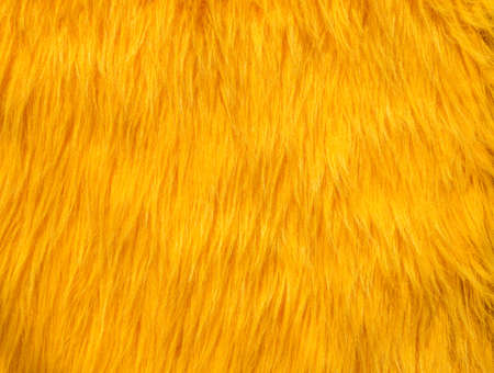 yellow fur texture background Stock Photo - 19740181