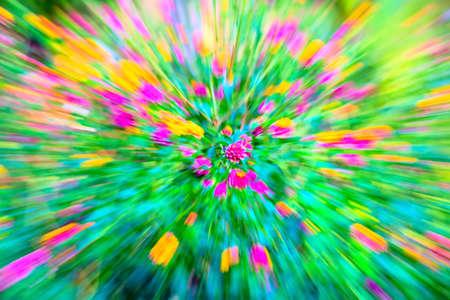 lantana camara: motion blur flower Lantana camara